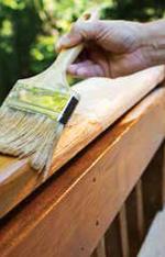 Male Carpenter Applying Varnish To Wooden Furniture.